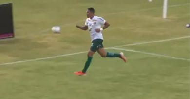 Gabriel Freitas marcou os dois gols da Francana