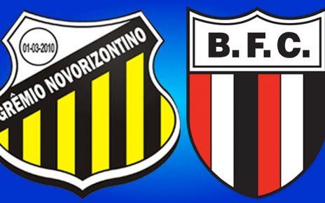 Saiba onde assistir Novorizontino x Botafogo ao vivo