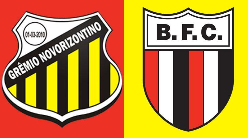Saiba assistir Grêmio Novorizontino x Botafogo ao vivo