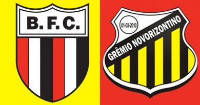 Saiba onde assistir Botafogo x Novorizontino